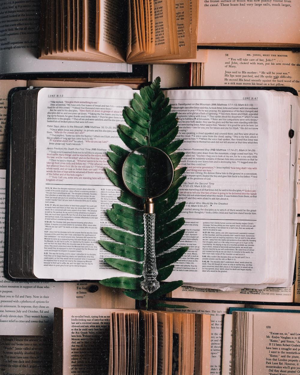 Best Christmas Devotional Ever.Bible Devotional Study 88 Best Free Study Bible Book