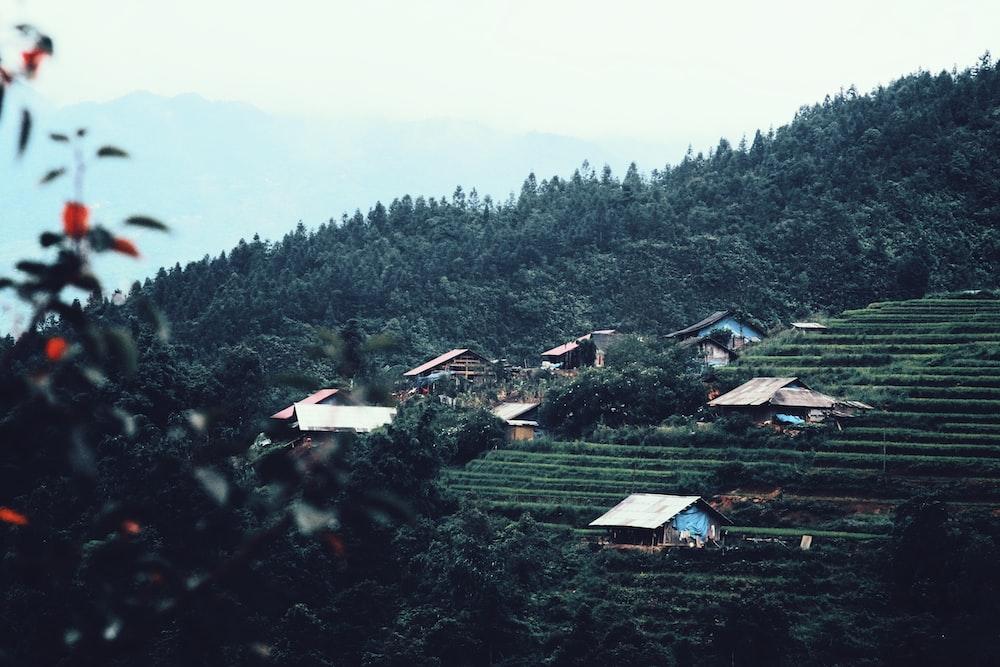 houses on green mountain
