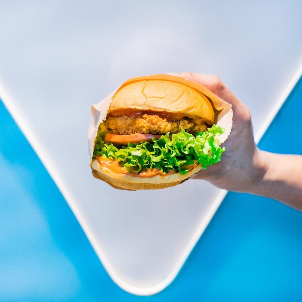 shallow focus photo of person holding hamburger