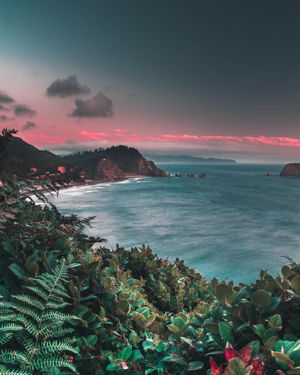 sea beside sleeping dinosaur island during golden hour