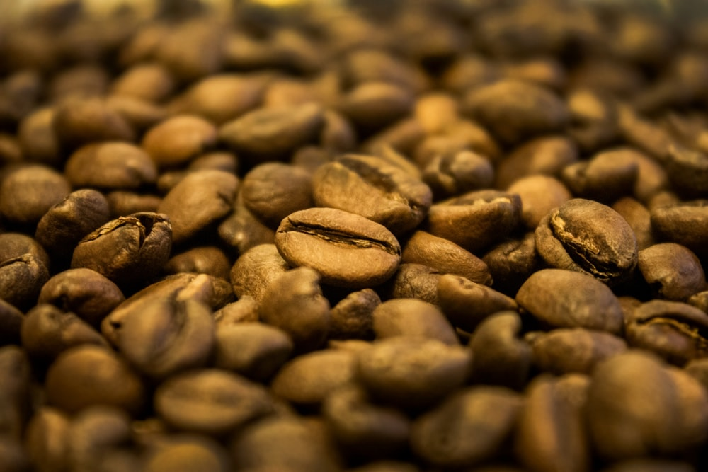 closeup photo of coffee beans
