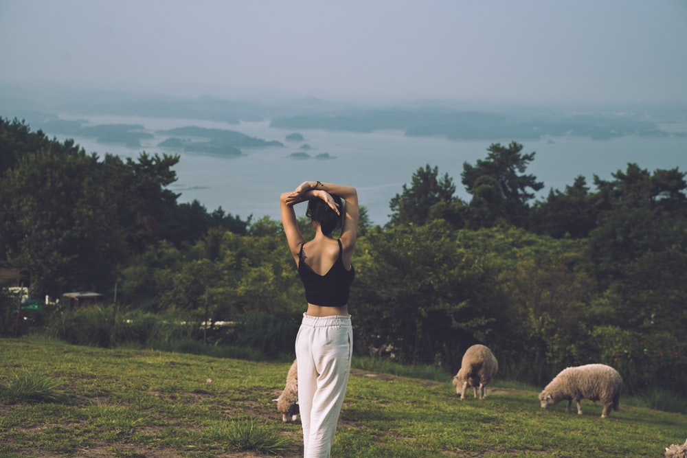 woman standing near sheep in green field surrounded with tall and green trees