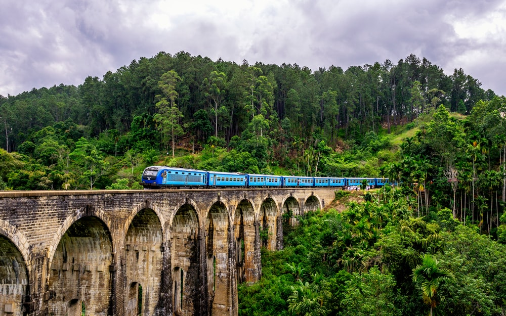 blue train surrounded by trees