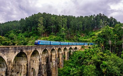 blue train surrounded by trees sri lanka teams background