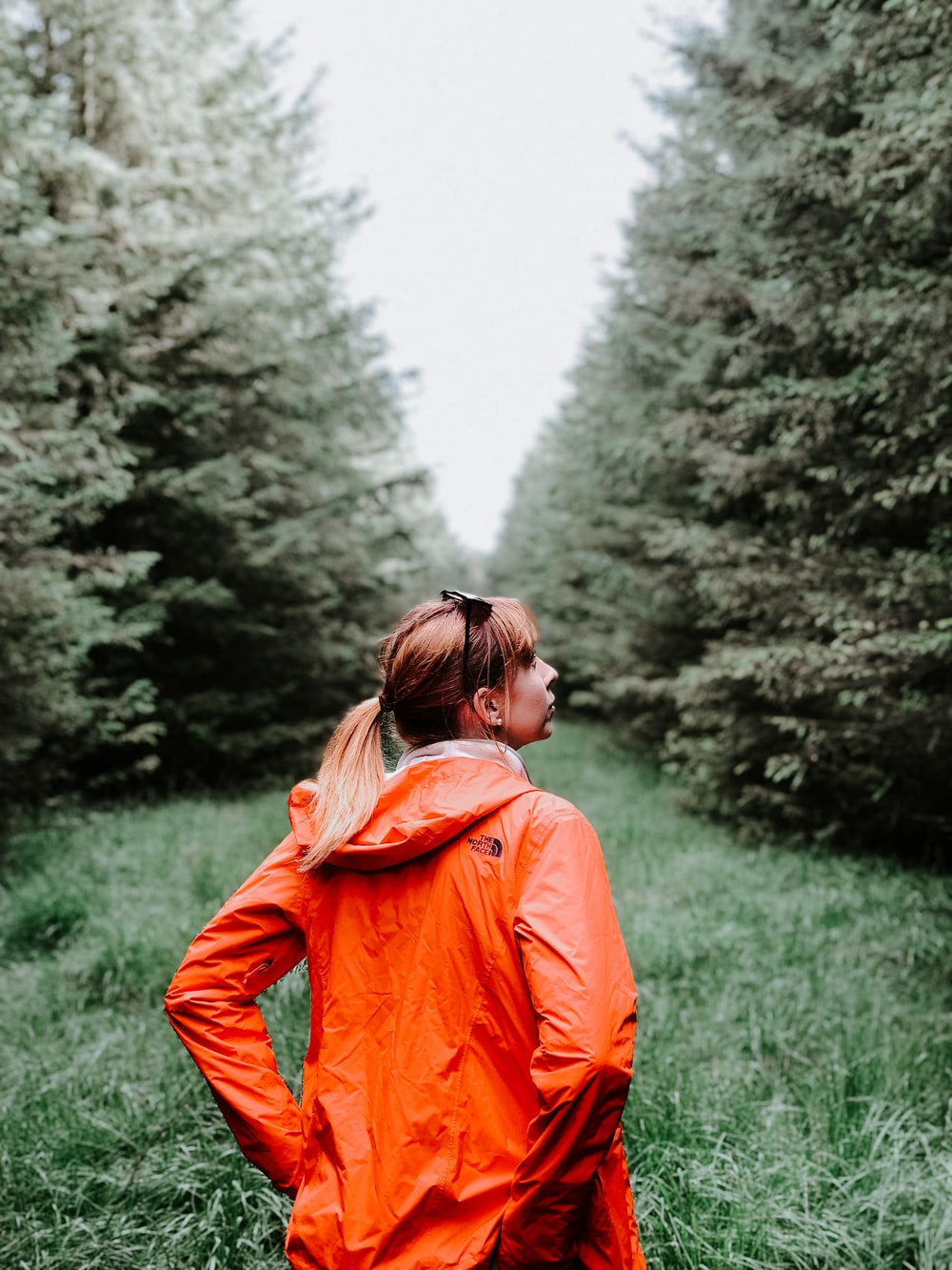 woman wearing orange hooded jacket standing in green field surrounded with tall and green trees during daytime
