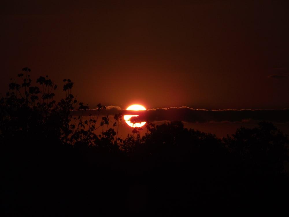 sunset photograph during nighttime