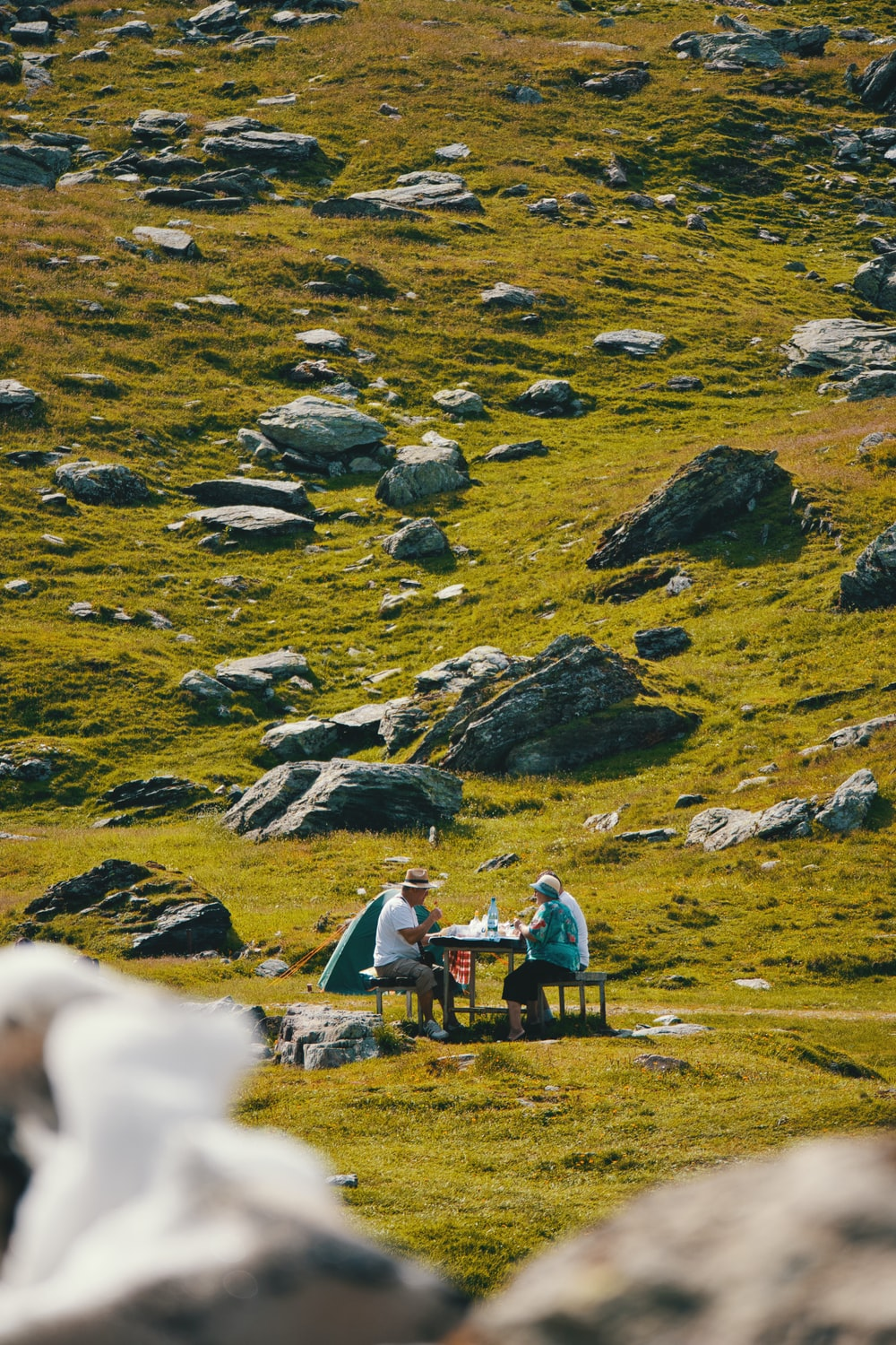 man and woman sitting beside dining table on green pasture
