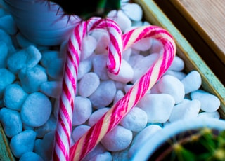 two candy canes on white stones