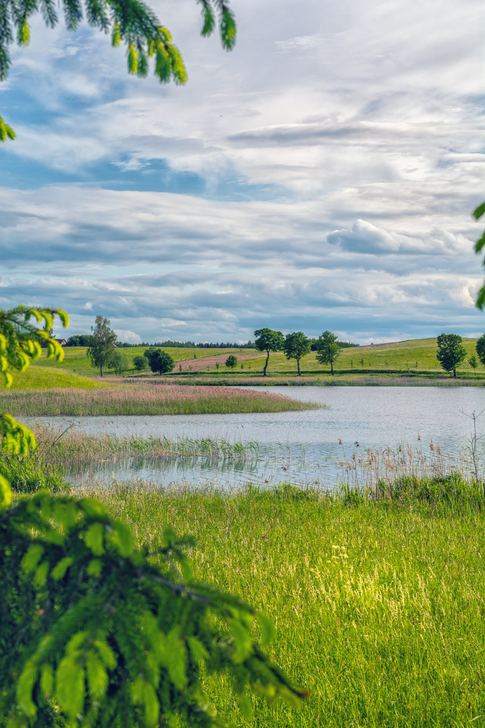 pond near green field under blue and white skies during daytime
