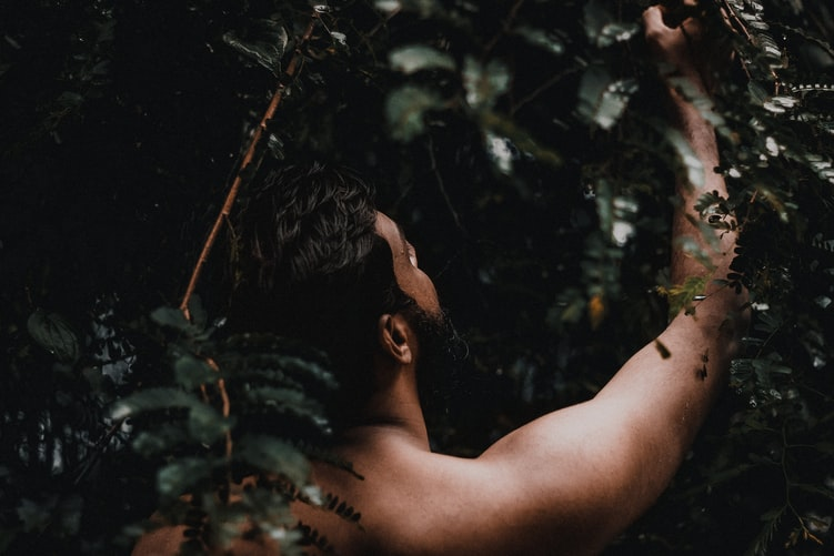 Ayurvedic treatment and herbs in Kerala