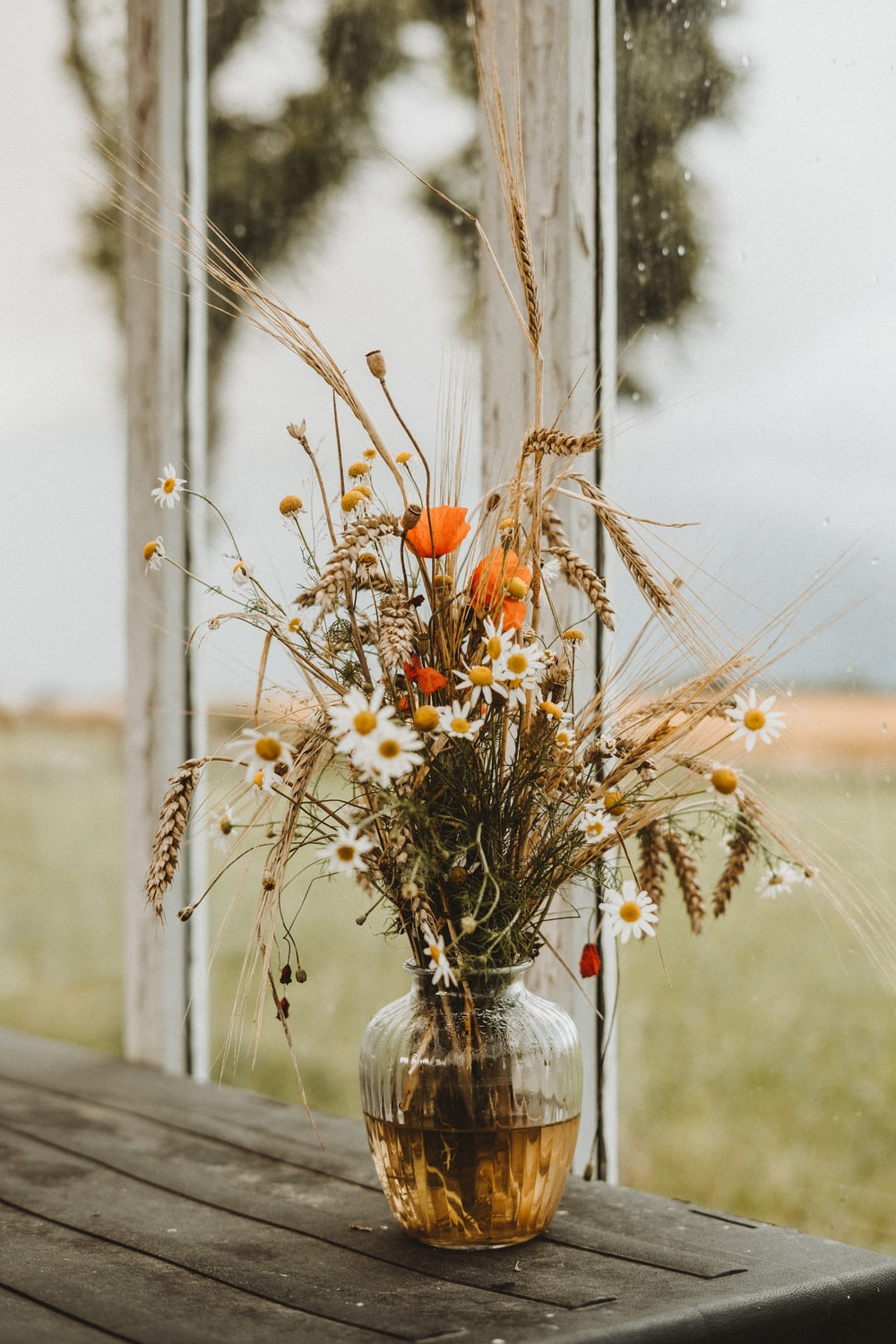 white and orange flowers on clear glass vase