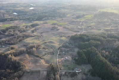 aerial photo of green trees during daytime lithuania teams background