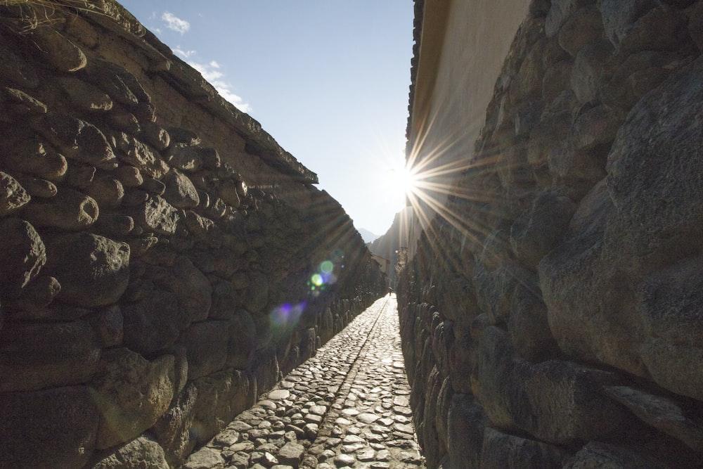 pathway between wall