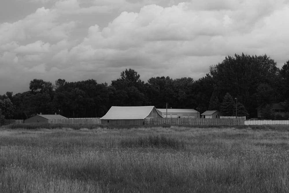 grayscale photography of house near field