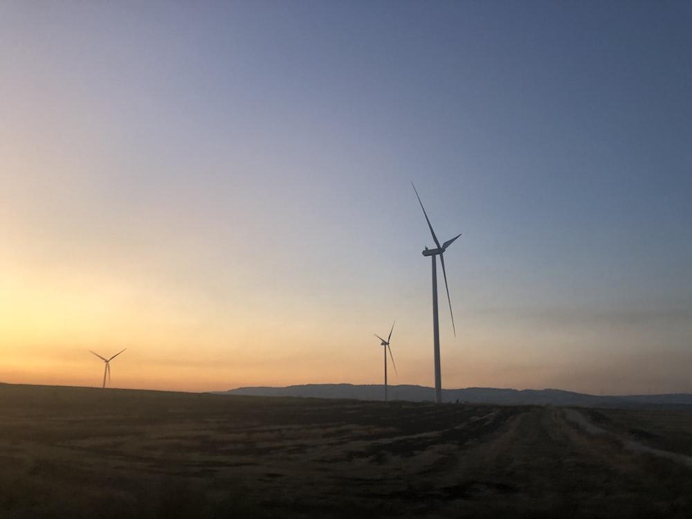 three wind turbines during golden hour