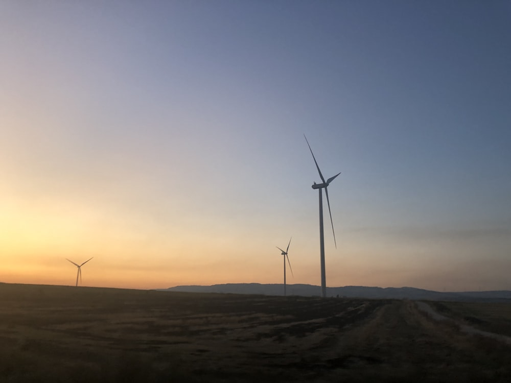 three wind turbines during golden hour