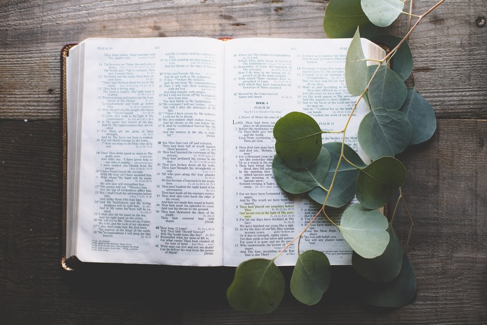 open bible with leaves on top