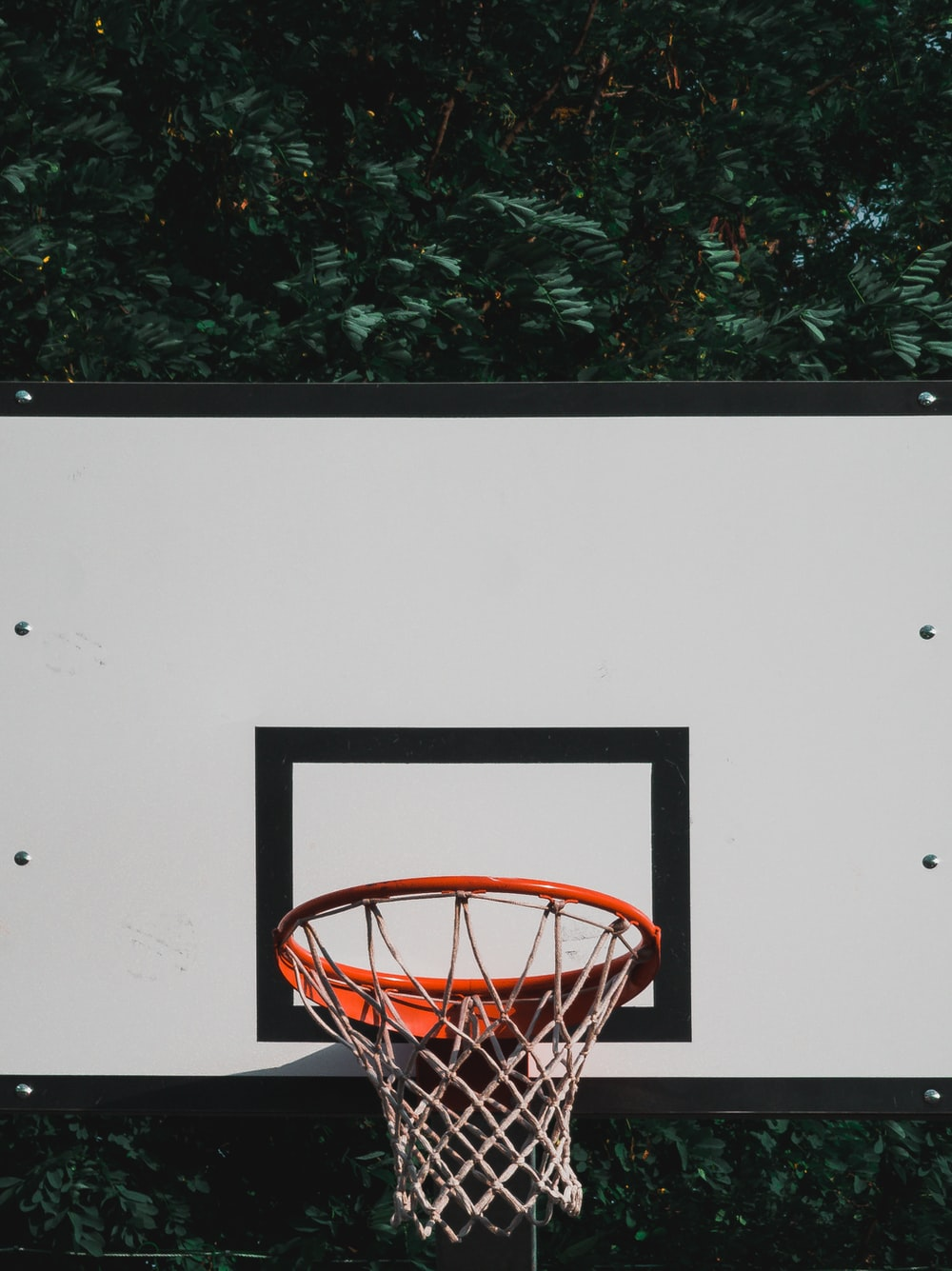 black, white, and red basketball hoop