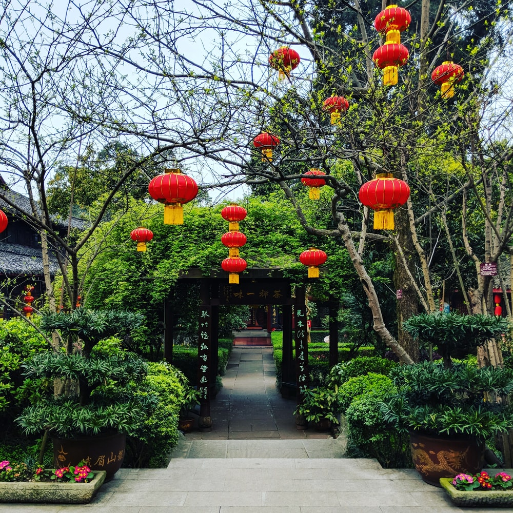 hanging red Chinese lanterns near trees and tunnel during day