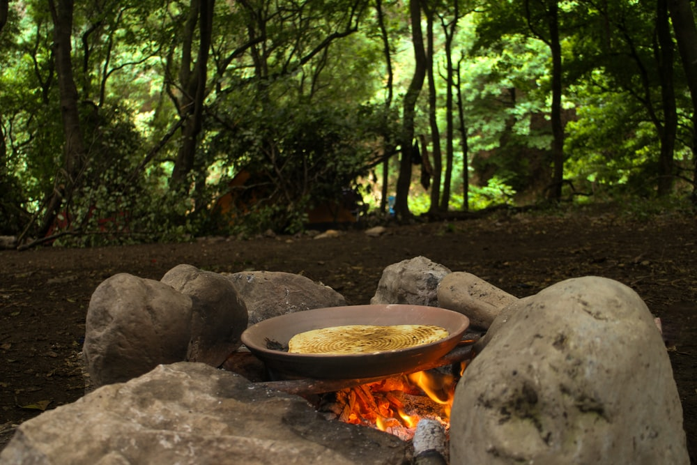 pancake in wok surrounded with tall and green trees