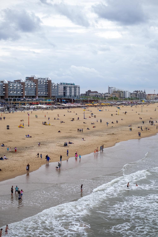people on the seashore photography