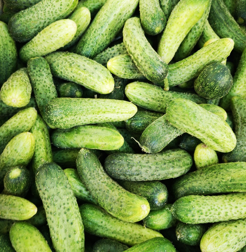 flat-lay photography of green cucumbers