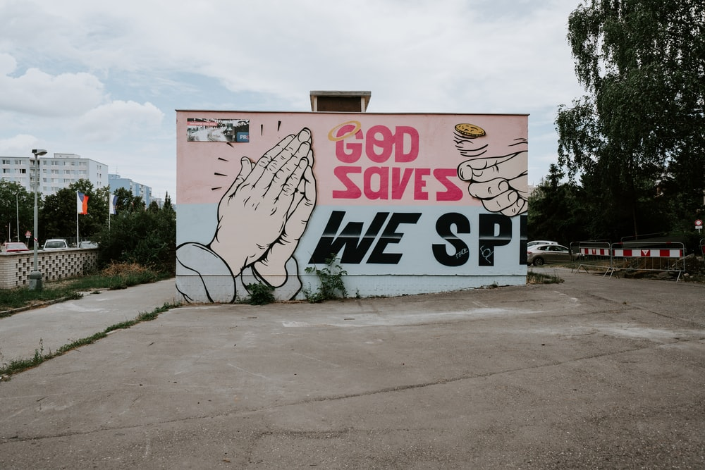 pink and multicolored God saves we SP painting