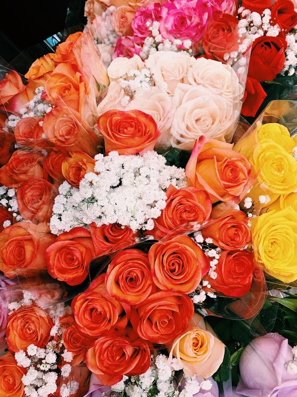 assorted-color flower bouquet