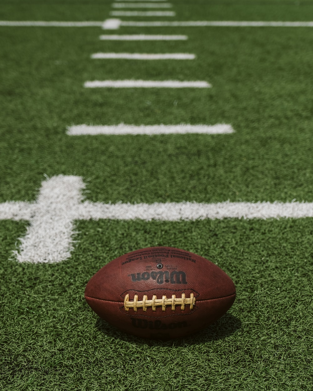 100 Football Field Pictures Download Free Images On Unsplash