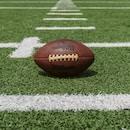 New York Giants, Giants, Eddie Moraes, brown and black Wilson football