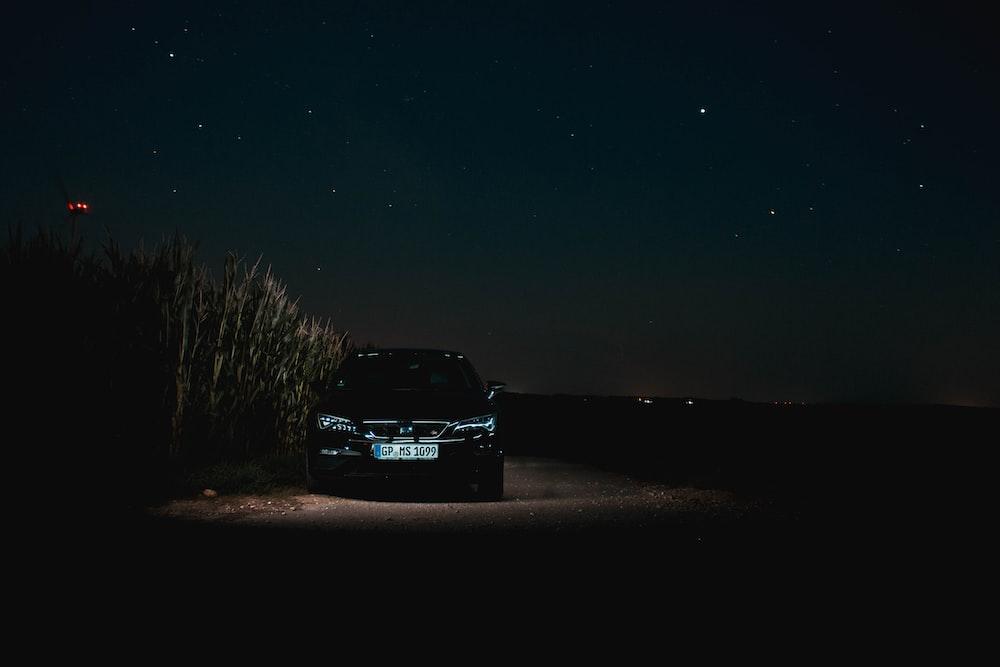 black SUV near plant s