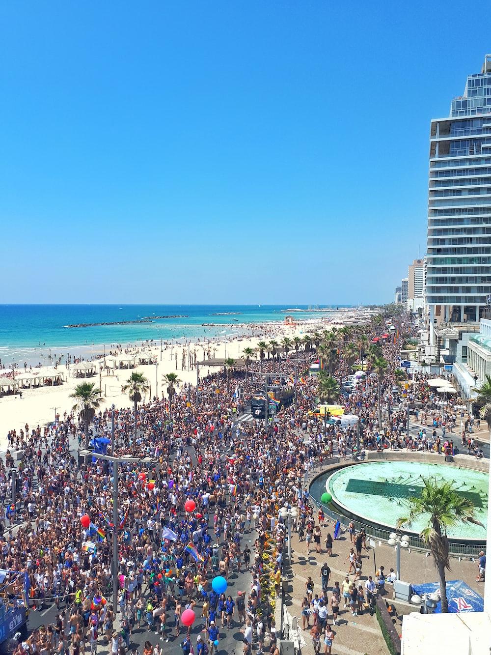 people on seashore beach