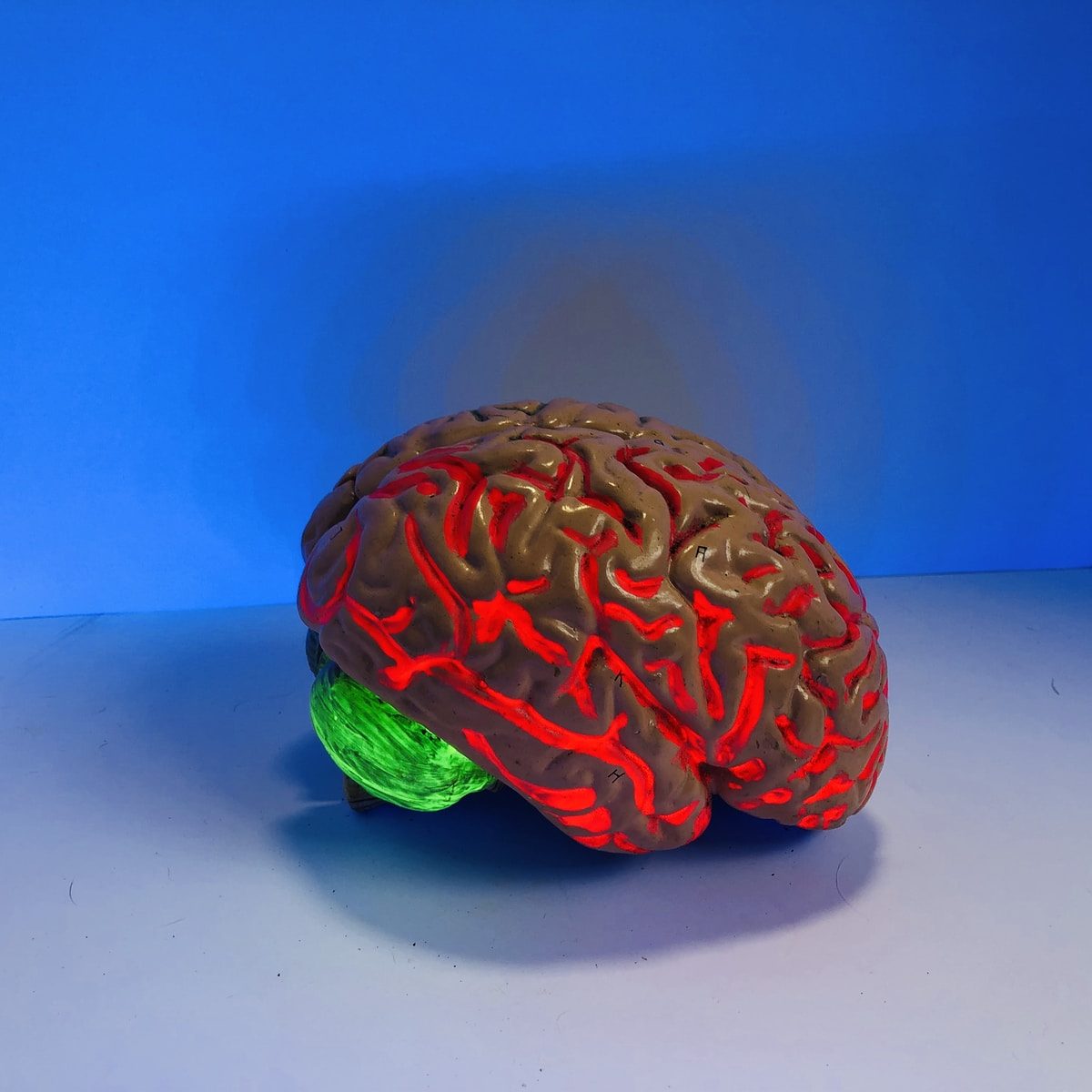 brain figurine