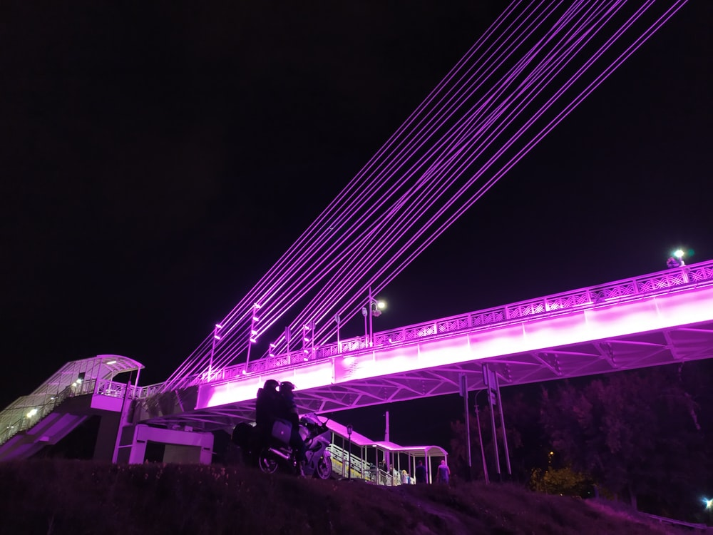 architectural photography of purple-lighted bridge