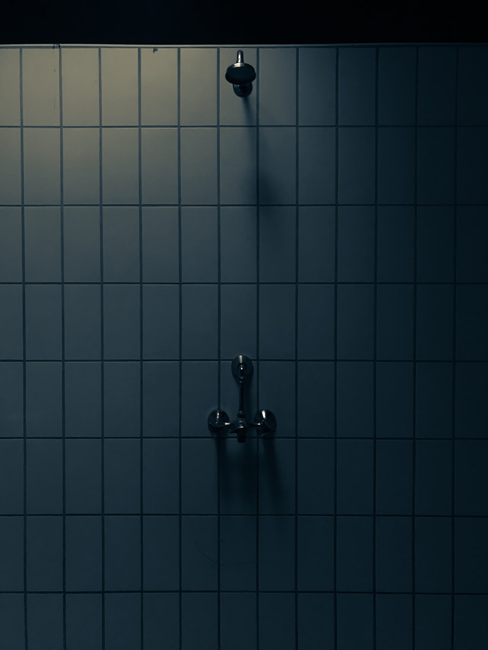 gray shower head