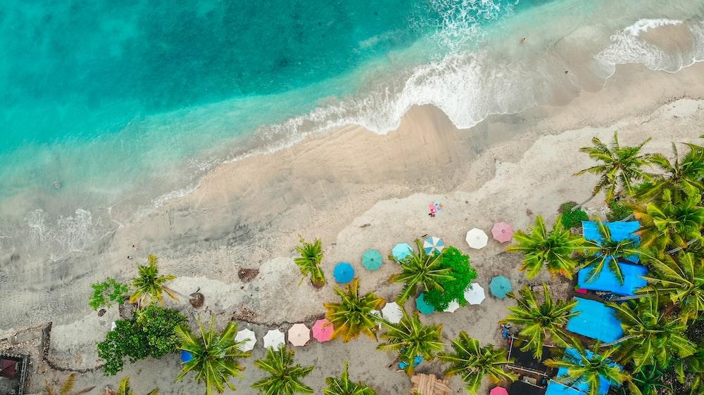 aerial photograph of beach umbrellas near beach
