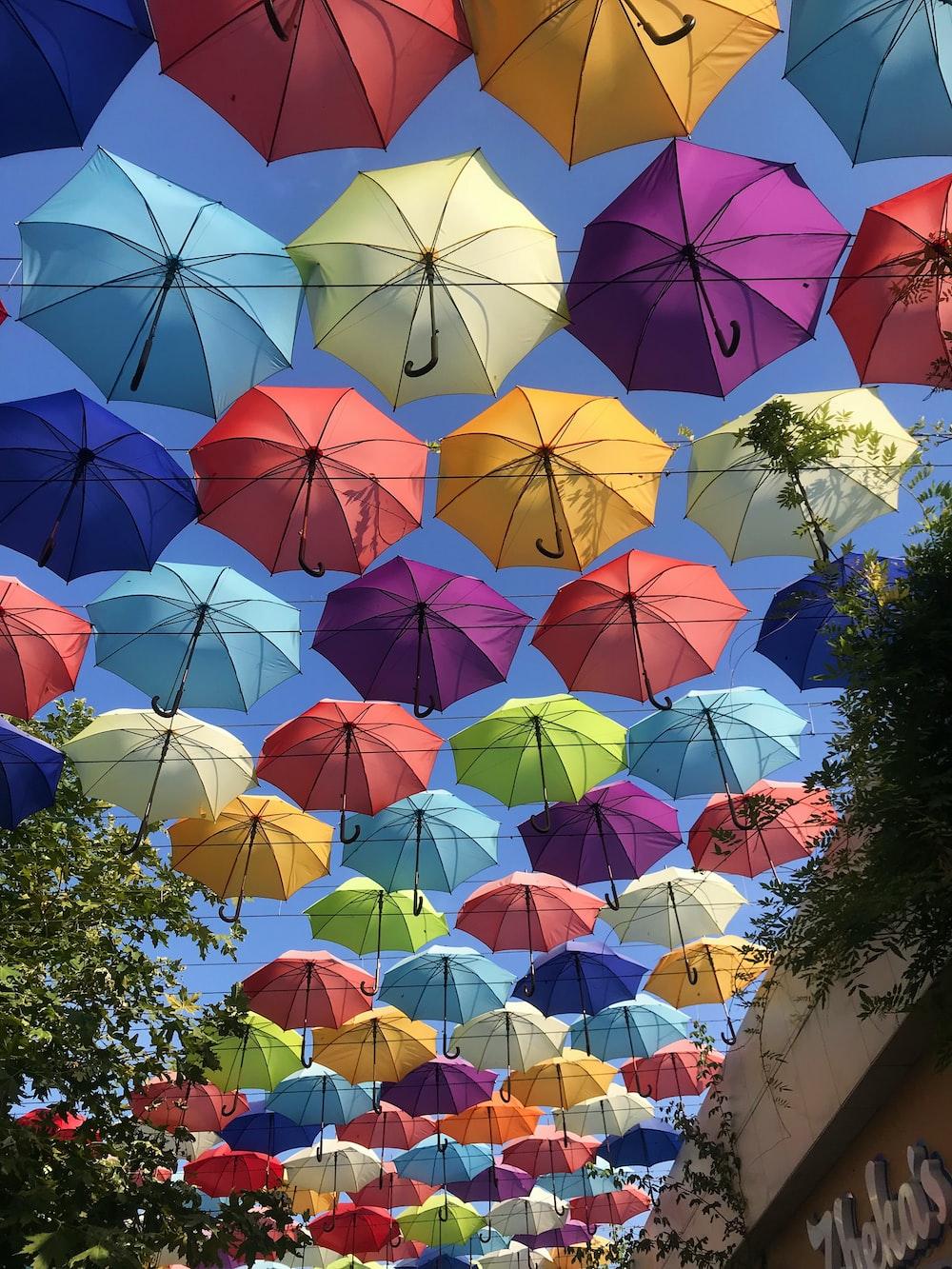 assorted-color umbrellas roof
