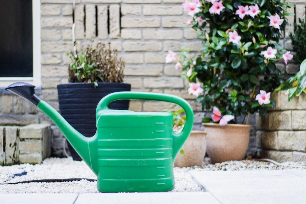 Balkonda Bitki Yetiştirmek için Kullanabileceğiniz Ürünler