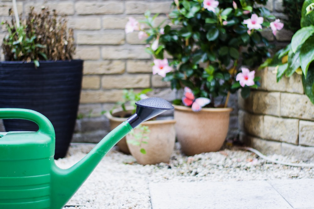 green and black watering can