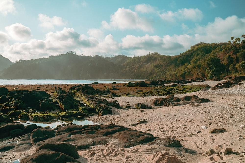 photo of mountain and seashore