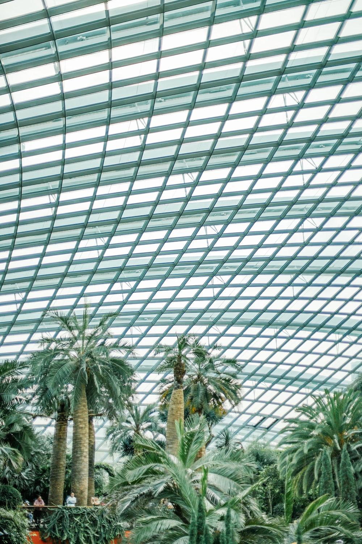 green indoor garden