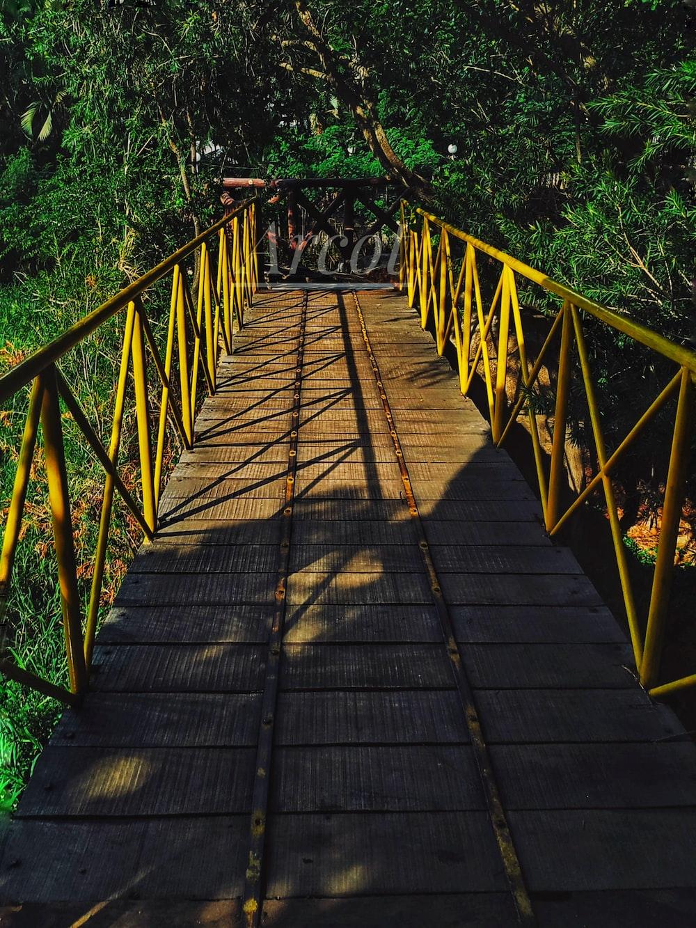 trees beside brown and yellow bridge