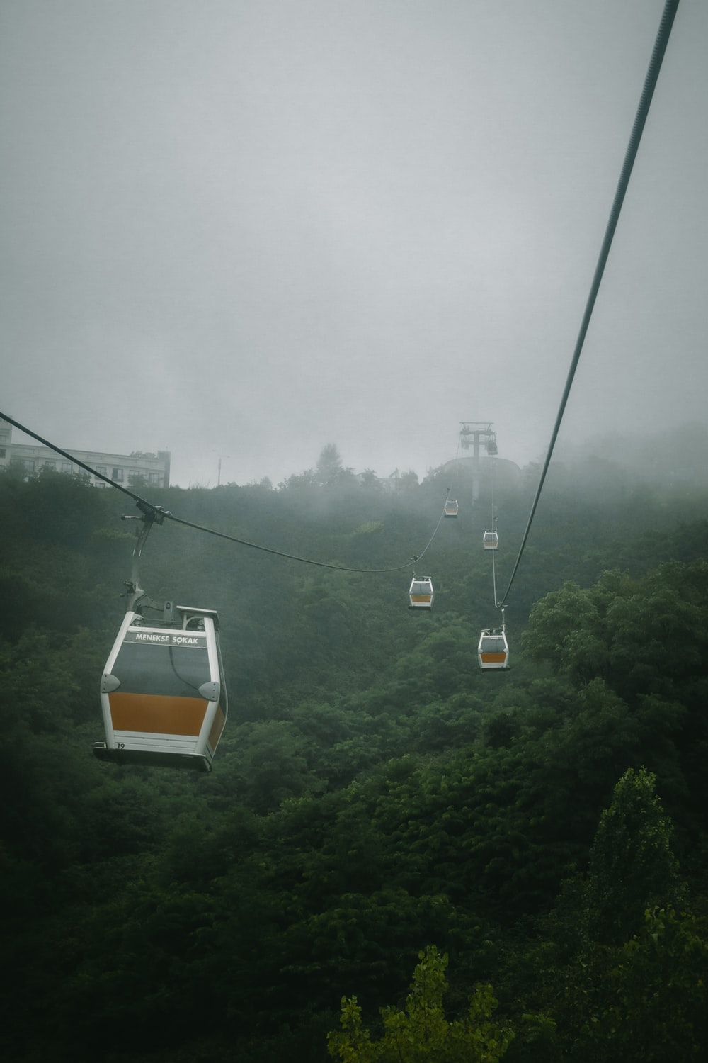 cable cars at daytime