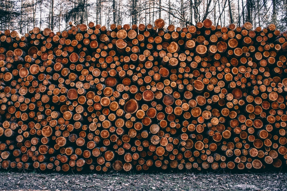 pile of fire woods at daytime