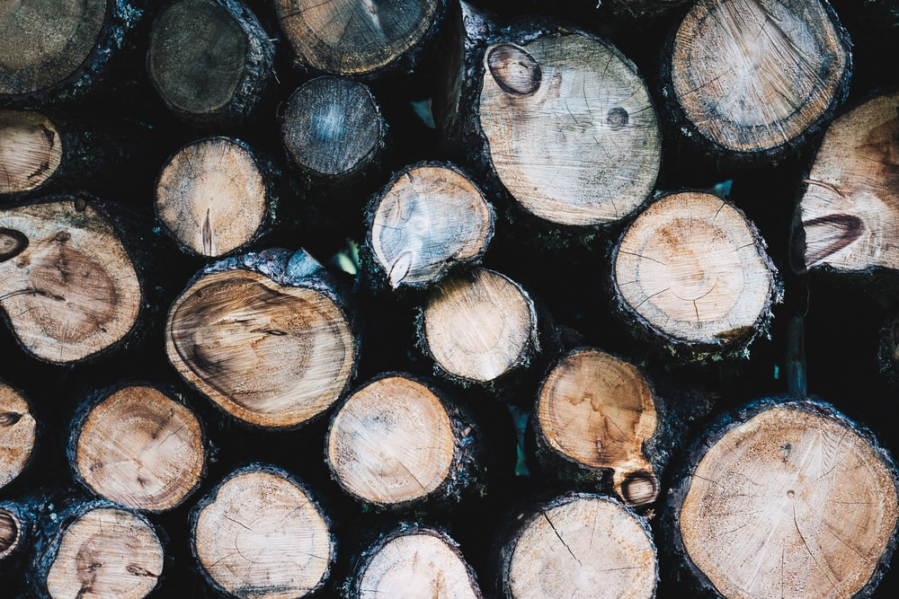 brown and gray logs