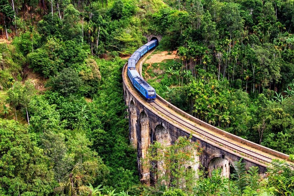 blue train on focus photography