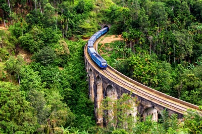 blue train on focus photography sri lanka teams background