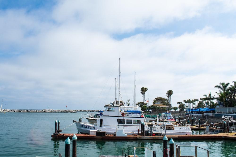 boats in pier