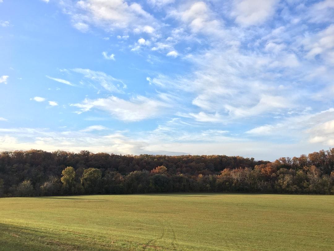 Brown Branch, SW Missouri in the Autumn