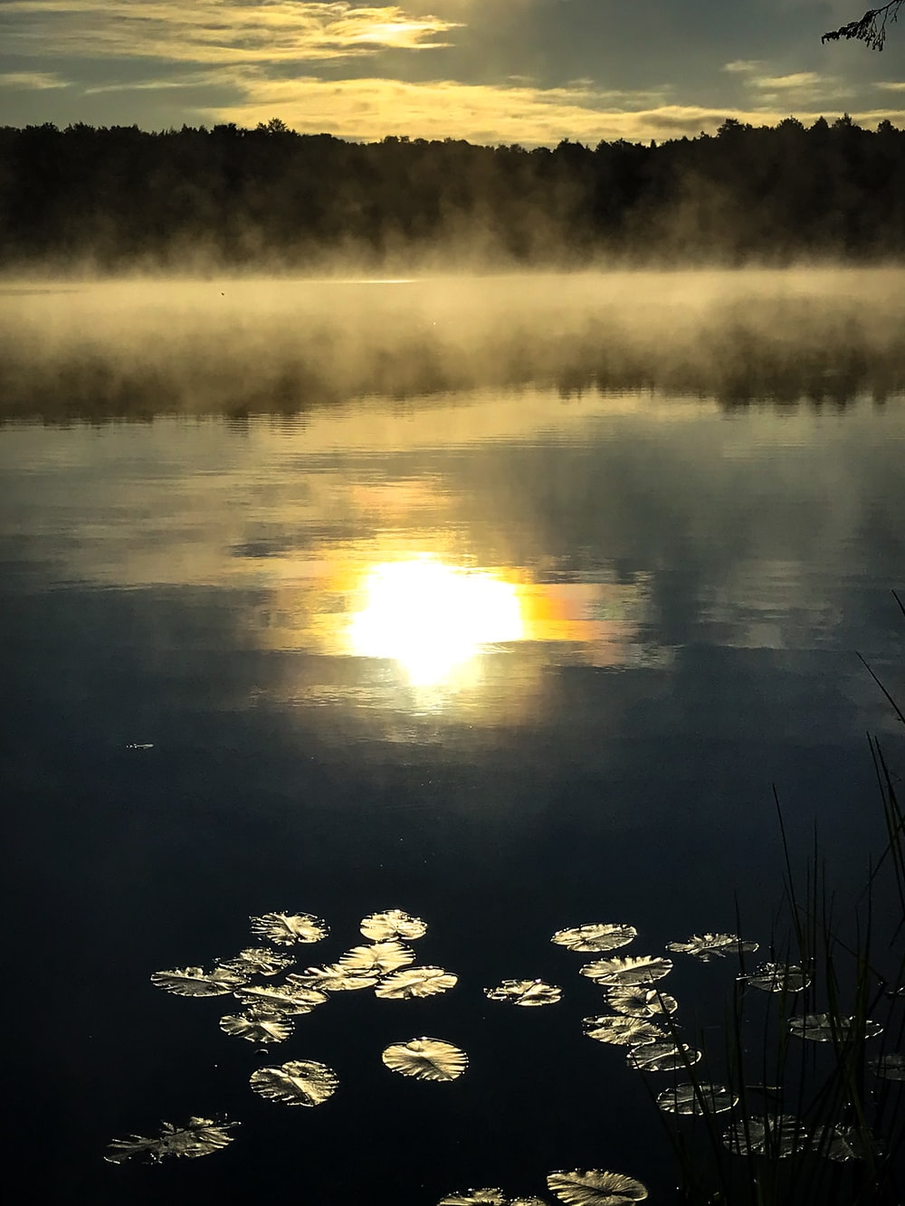 body of water with reflections of sun